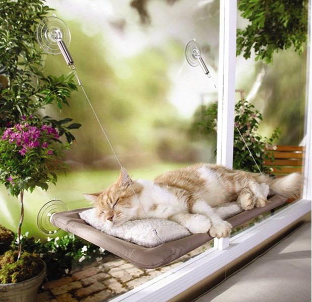 Window Bed Pet